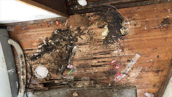 北九州市 ゴミ屋敷の片づけ(ゴミ屋敷を放置するとこうなります)